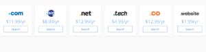 Domain cost 2020